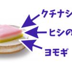 ひな祭りの菱餅の食べ方は?意味や由来・色の意味や作り方も公開!
